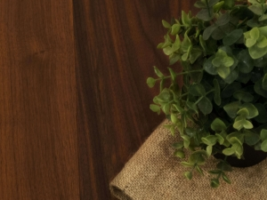 The Environmental Benefits of Wood Flooring