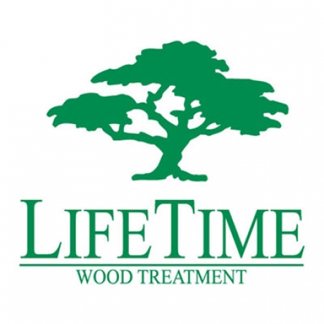 Lifetime logo n